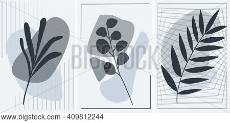 Abstract Botanical Posters Set With Geometric Lines. Grey Color Interior Posters