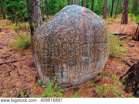 Woodland Stone - A Large Boulder On A Rainy Day In The Forest Along Fr1120 - Near Camp Sherman, Or