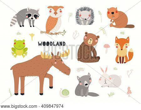 Cute Wild Animals Clipart Collection, Isolated On White. Hand Drawn Vector Illustration. Woodland El
