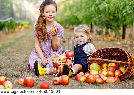 Portrait Two Siblings Girls, Little Toddler And Kid With Red Apples In Organic Orchard. Happy Siblin
