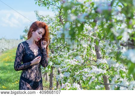 Romantic Woman In Lace Dress At Spring Blossom Garden. Concept Of Tenderness And Modern Femininity