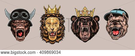 Animal Angry Characters Set. Gorilla In Biker Helmet, Lion And Bear In Riyal Monarch Crown, Bulldog