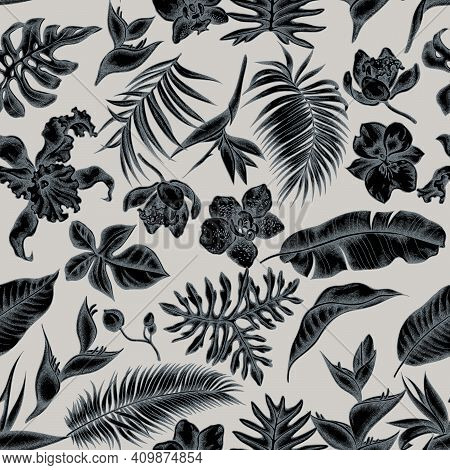 Seamless Pattern With Hand Drawn Stylized Monstera, Banana Palm Leaves, Strelitzia, Heliconia, Tropi