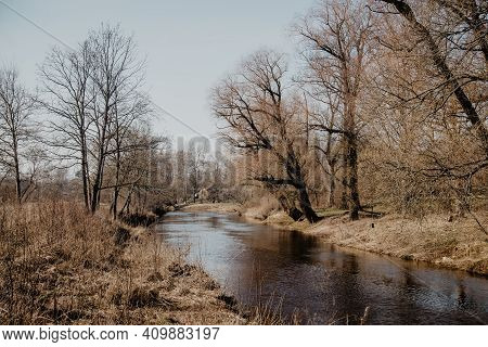 Forest River Water Reflection Landscape. River Forest Scene. Forest River Reflection. Forest River W