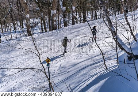 Montreal, Ca - 4 February 2021: People Skiing On A Snowy Trail In Montreal\'s Mount Royal Park (parc