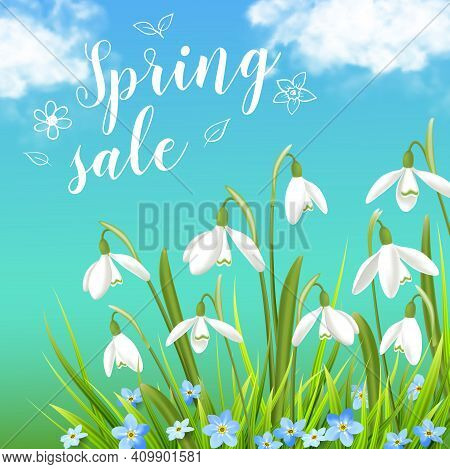 Snowdrops And Green Grass On A Blue Sky Background. Spring Floral Background. Vector Illustration.