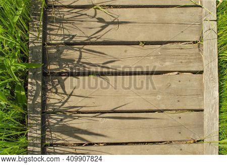 Footbridge Crossing The Dense Thickets. Path Through A Green Summer Park. Wooden Walkway, Path In De