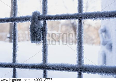 Metal Fence With Lock Covered With Hoarfrost