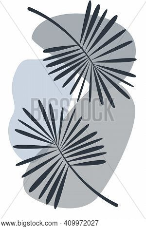 Abstract Botanical Poster Monochrome Gray. Vector Poster Palm Tree