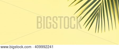 Tropical Palm Leaves Isolated On Bright Yellow Background.