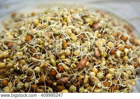 Mixed Sprouted Beans Ready For Making Quanti At Janai Purnima Or Raksha Bandhan Festival. Healthy Fo