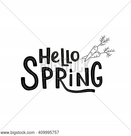 Hello Spring Handwritten Sign With Carrots. Vector Stock Illustration Isolated On White Background.