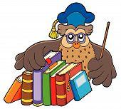 Owl teacher holding books - vector illustration. poster