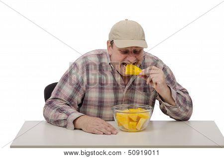 Farmer Testing Yellow Watermelon