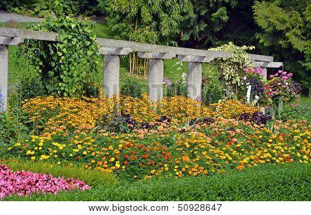 Colorful Botanical Garden In Summer