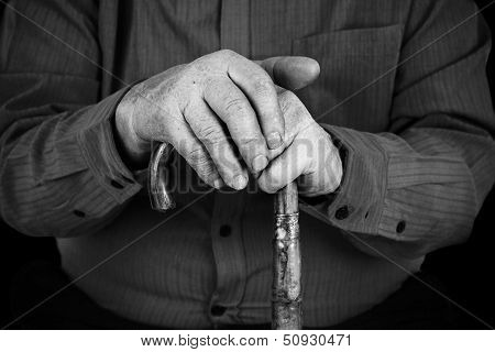Semior's Hands On Cane