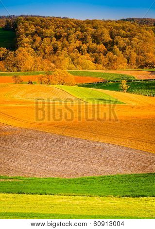 Evening Light On Farm Fields In Rural York County, Pennsylvania.
