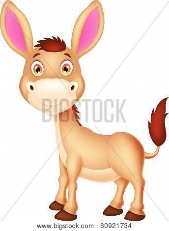 Cute donkey cartoon
