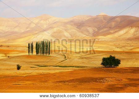 Majestic orange desert, rough dry riverbed