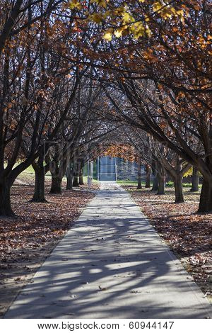 Autumn Colours. Embankment Of Burley Griffin Lake Near National Gallery. Canberra. Australia