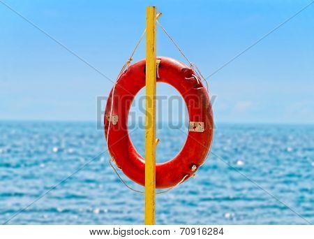 Lifebuoy Against Sea Horison