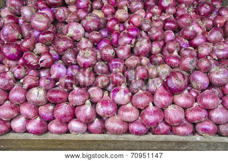 red onion vegetable background in asia market poster
