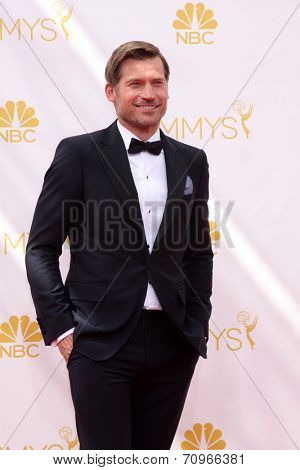 LOS ANGELES - AUG 25:  Nikolaj Coster-Waldau at the 2014 Primetime Emmy Awards - Arrivals at Nokia at LA Live on August 25, 2014 in Los Angeles, CA