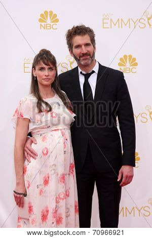 LOS ANGELES - AUG 25:  Amanda Peet at the 2014 Primetime Emmy Awards - Arrivals at Nokia at LA Live on August 25, 2014 in Los Angeles, CA