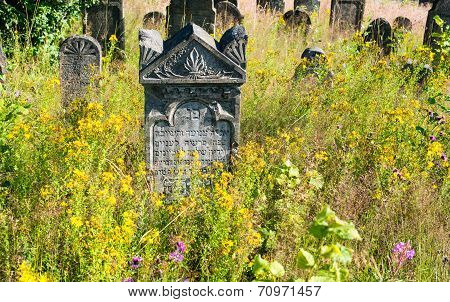 Old Abandoned Jewish Cemetery In The Ukrainian Carpathians