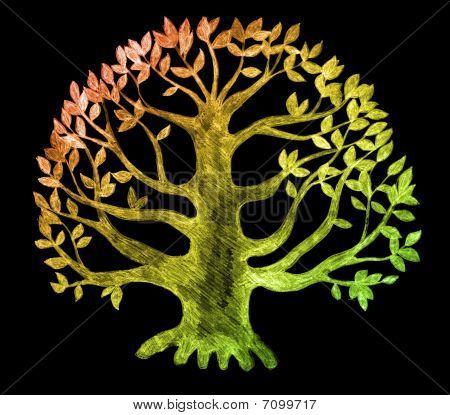 tree of life, sketch