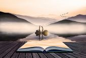Book concept Beautiful romantic image of swans on misty lake with mountains in background landscape poster