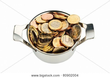 a pot is filled with euro coins photo icon for government grants and subsidies