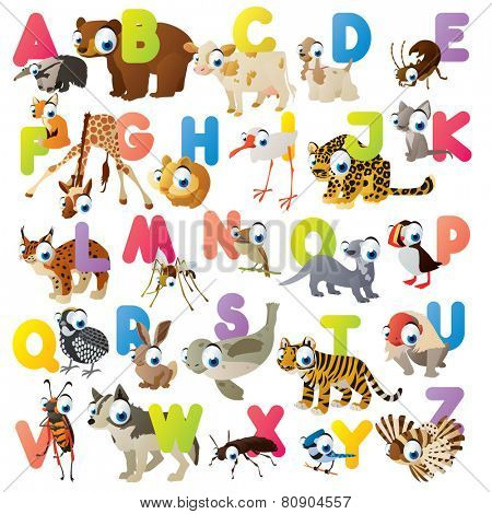Vector cute cartoon isolated animal ABC for kids preschooler flash card game