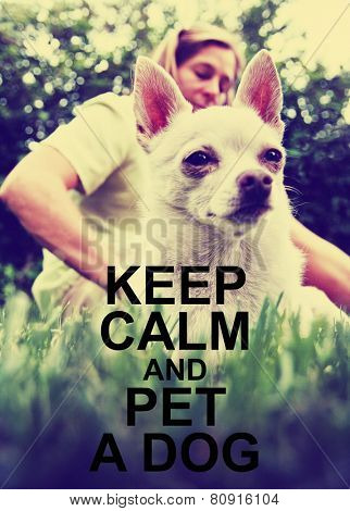cute dog at a park getting petted toned with a retro vintage instagram filter effect app or action with a quote added on: keep calm and pet a dog, meme