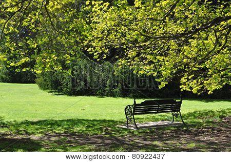 The Garden Seat