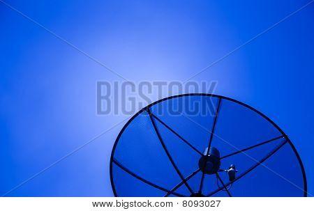 The Satelite