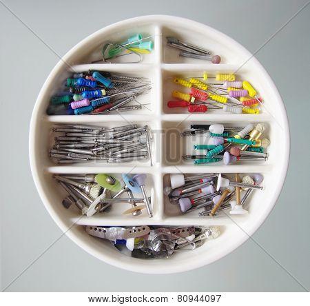 Endodontic  Equipment  In Petri Dish Glass