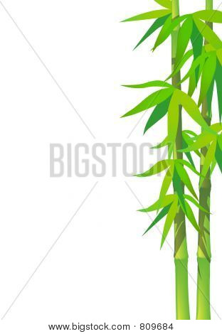 BambooLeaves_Vertical