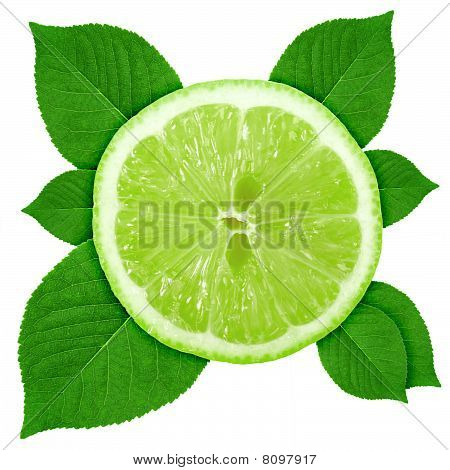 Single Cross Section Of Lime With Green Leaf