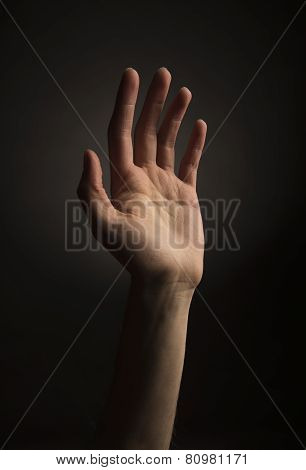 Hand Reaching Up
