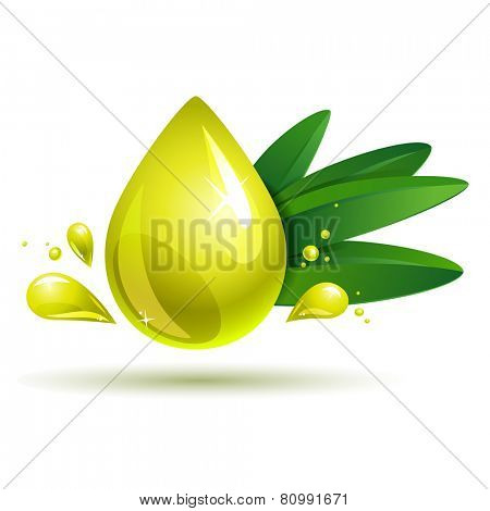 oil drop with olive branch on white. eps10