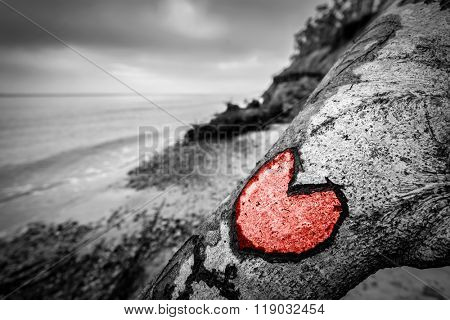 Heart carved into fallen tree trunk on the wild beach and painted red. Romantic, nostalgic love mood on a cloudy day. Color in black and white.