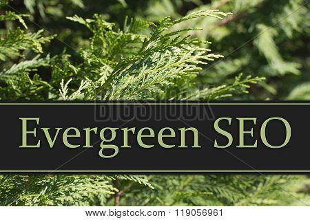 Evergreen Seo Message