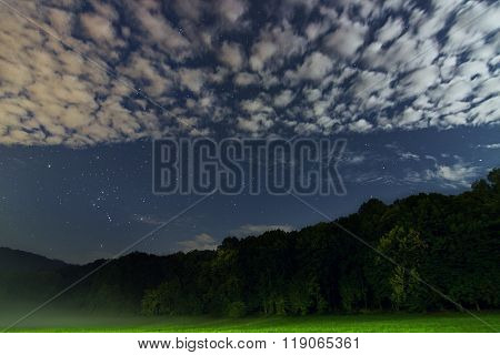 Beautiful night sky Constellation of Orion, green forest, white clouds, starry night, fog