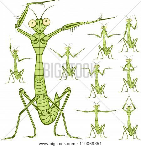Cartoon character Mantis.