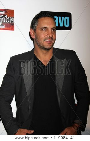 LOS ANGELES - DEC 3:  Mauricio Umansky at The Real Housewives of Beverly Hills Premiere Red Carpet 2015 at the W Hotel Hollywood on December 3, 2015 in Los Angeles, CA