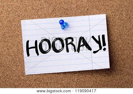 Hooray! - Teared Note Paper Pinned On Bulletin Board