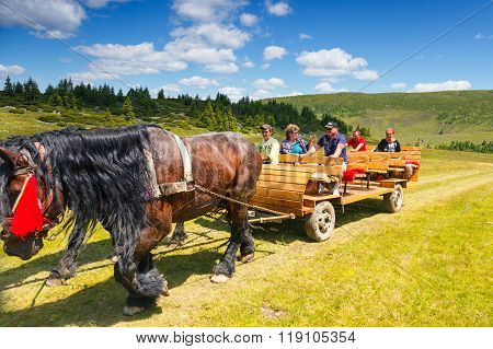 Rodna Mountains, Romania, 05 July 2015: Group Of Tourists Riding A Horse Cart In The Rodna Mountains