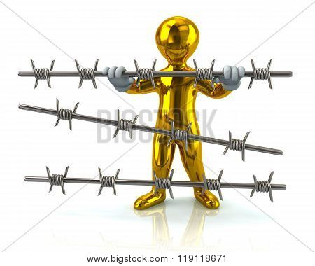 Golden Refugee And Barbed Wire