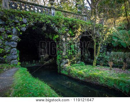 Bridge in the Terra Nostra Garden